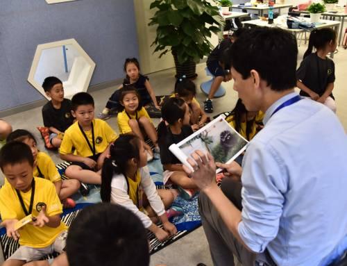 [每日一校] 北京海淀凯文学校